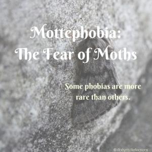 Mottephobia